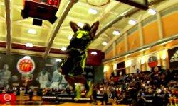 Shabazz Muhammad fait le show au concours de dunks du McDonald AAG