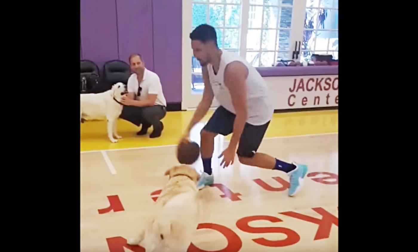 Klay Thompson tape des 1×1… avec un chien